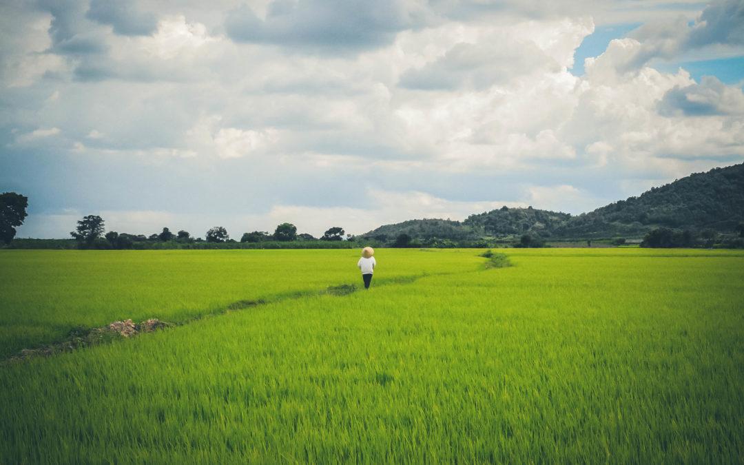 Que faire dans le sud du Vietnam ?