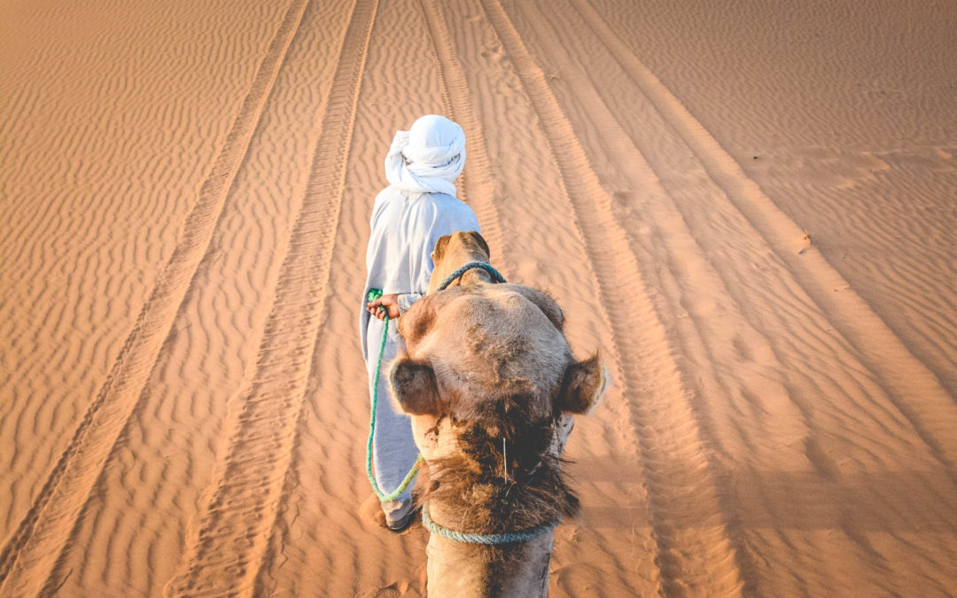 Maroc   Carnet de voyage d'une aventure solo