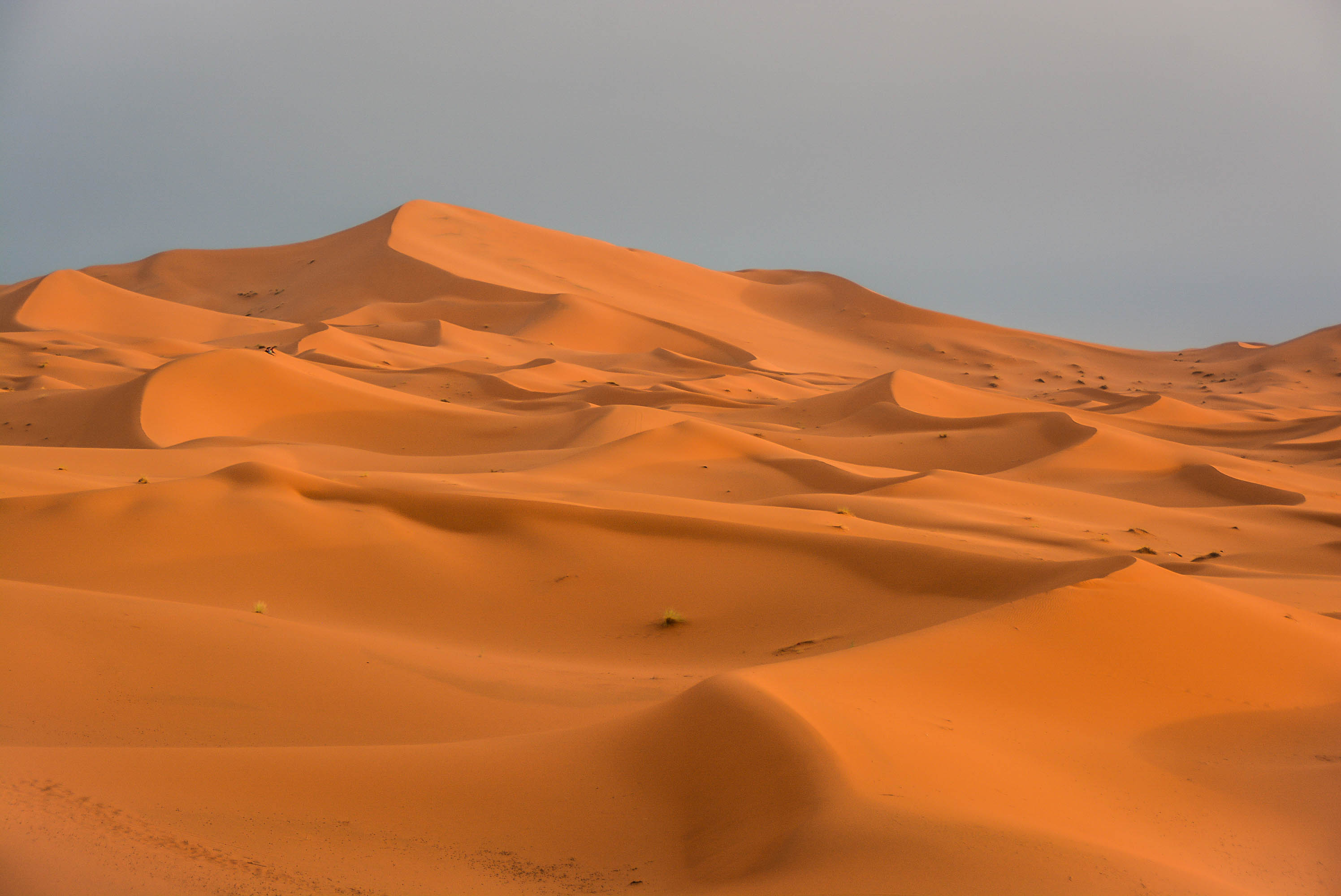 maroc sahara merzouga