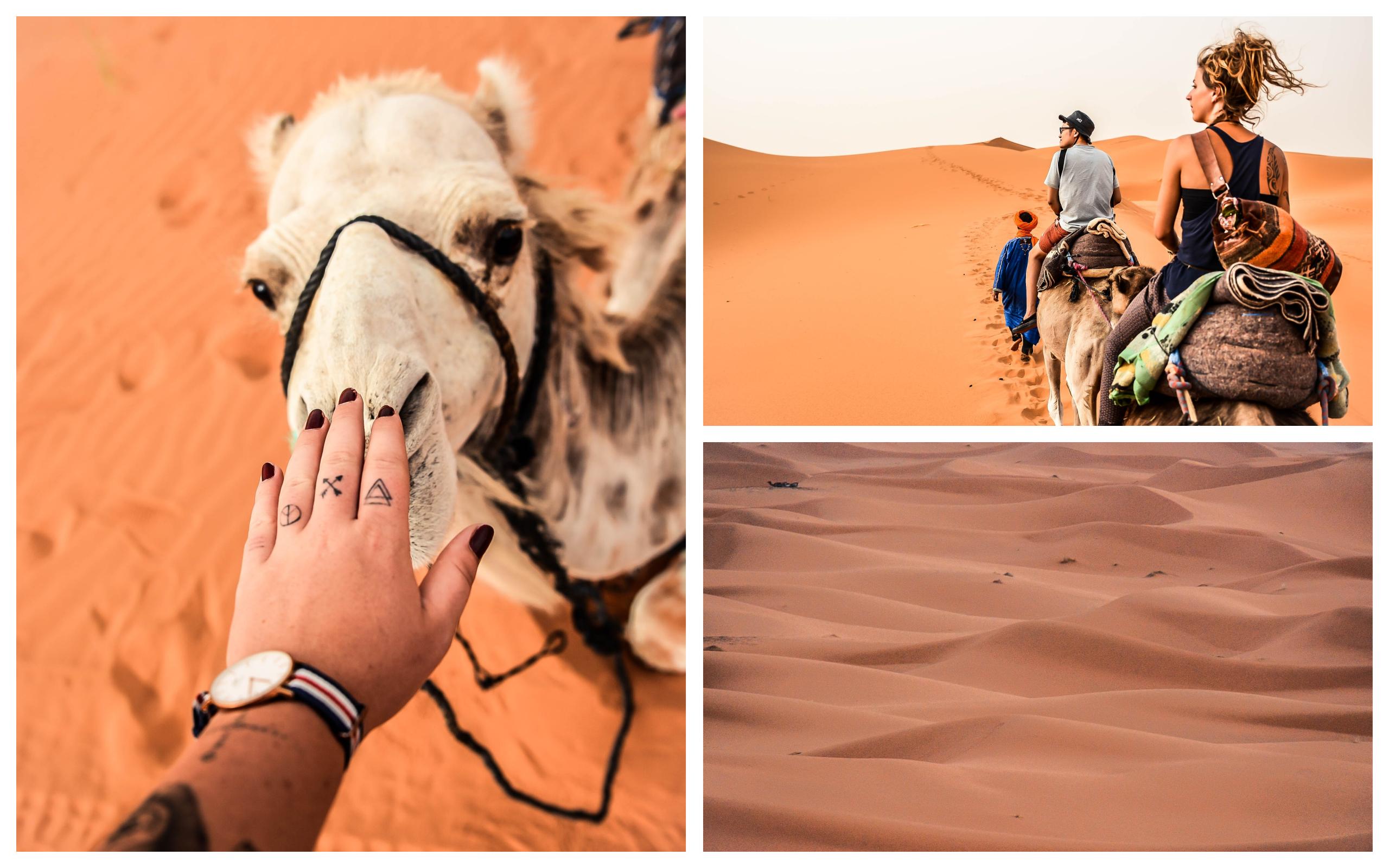 maroc merzouga blog