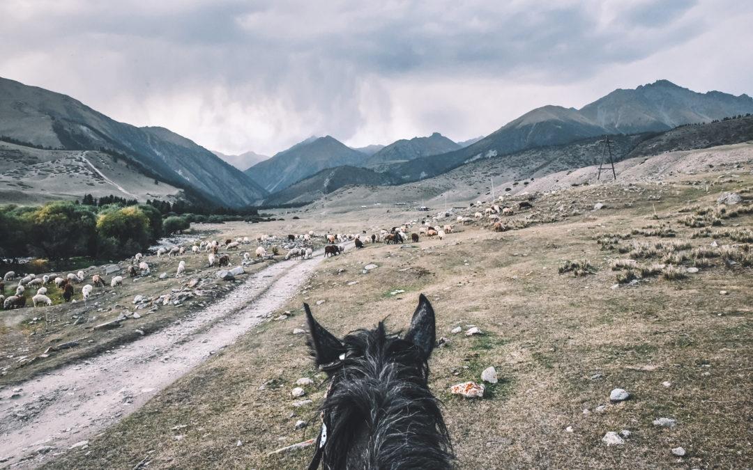 Road trip sac à dos au Kirghizistan