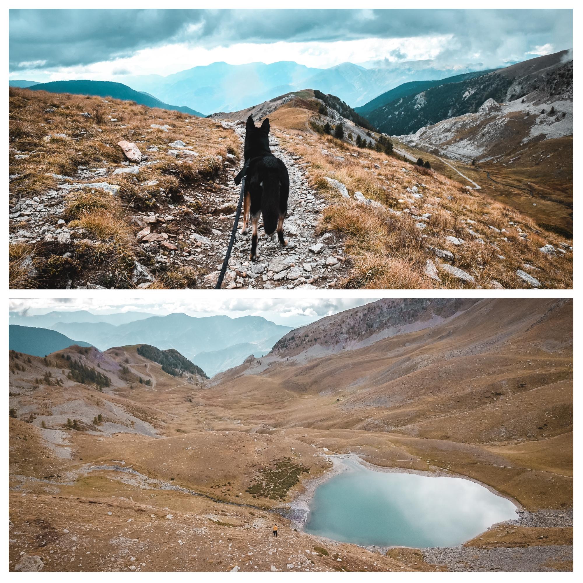 lac des millefonts mercantour chien