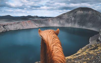 L'Islande à cheval, à la découverte des terres du Landmannalaugar