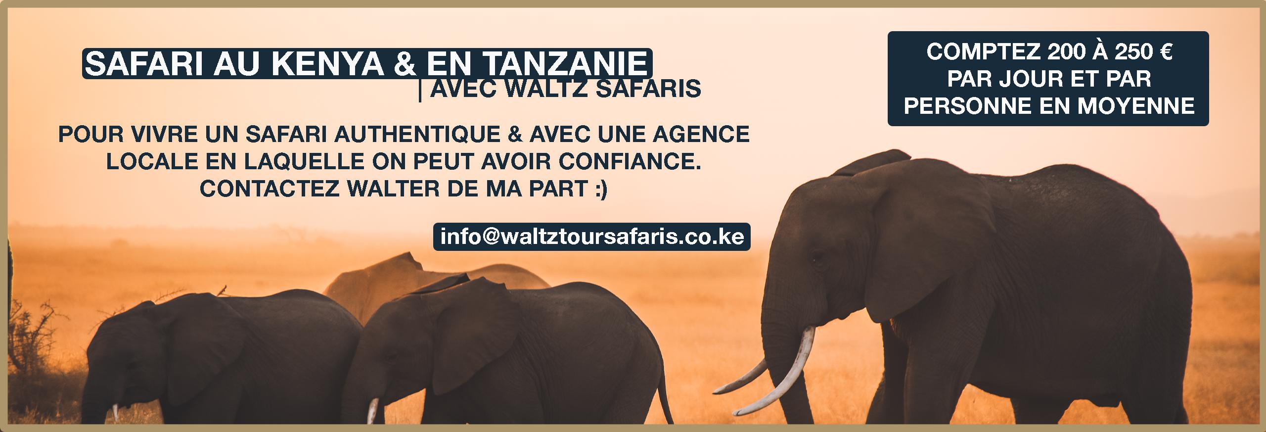 waltz safaris