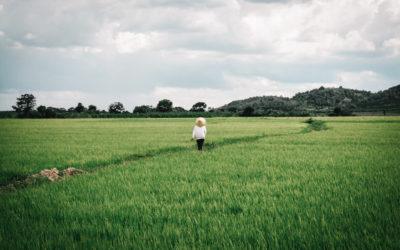Le Vietnam, voyage en solo du nord au sud