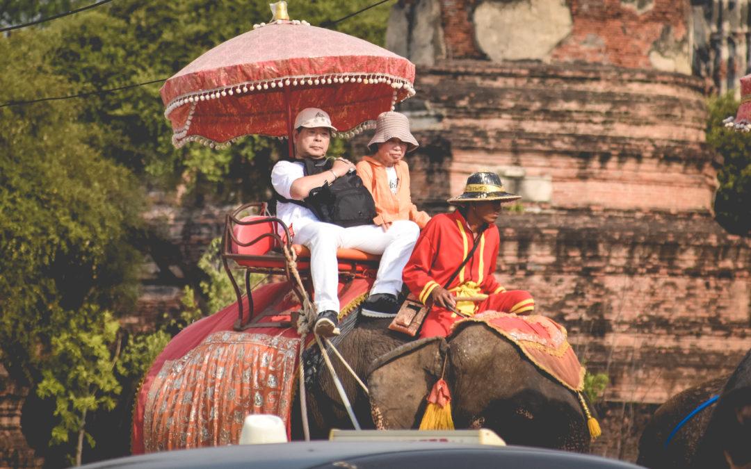 thailande elephant