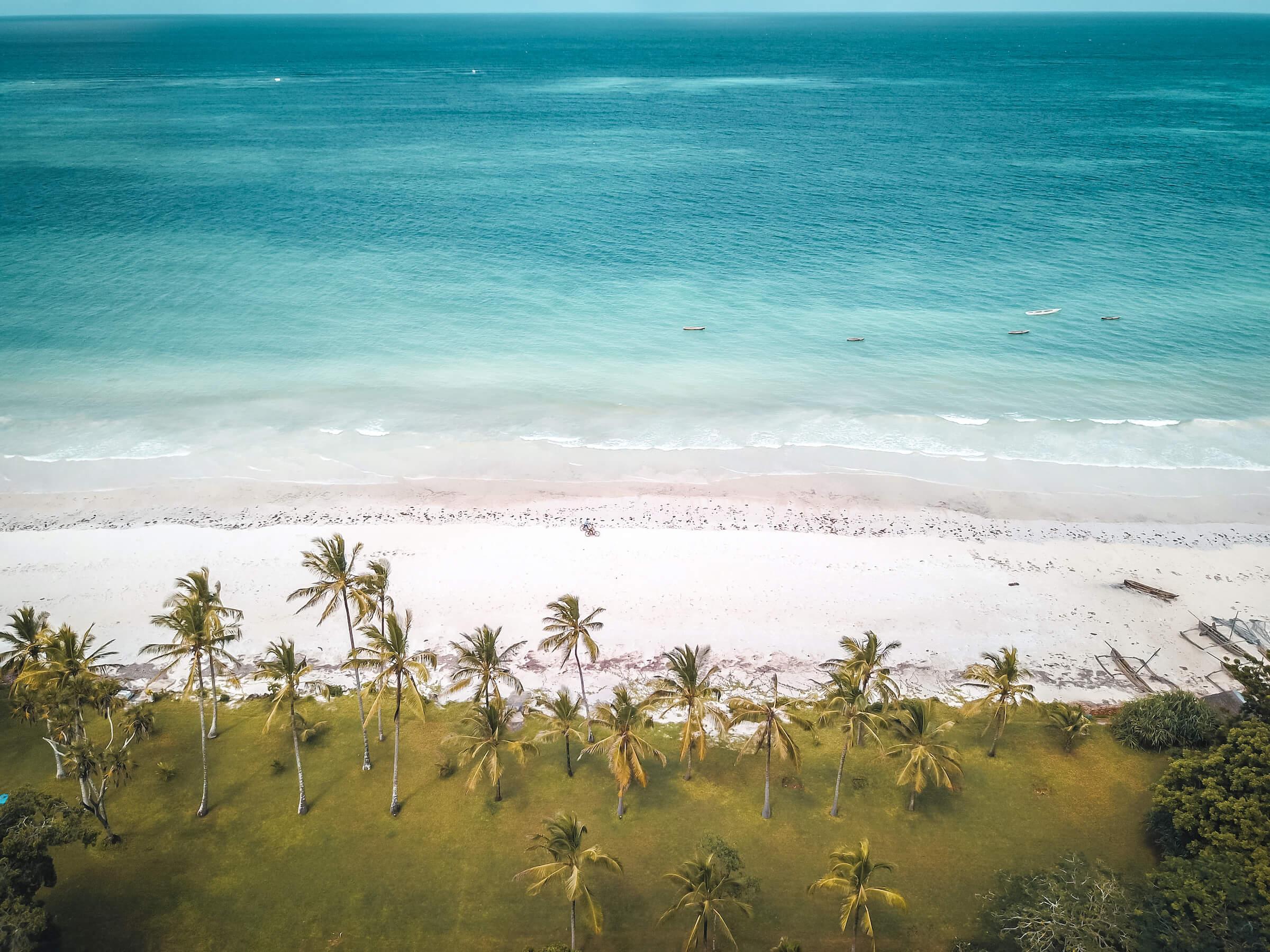plage kenya côte palmier