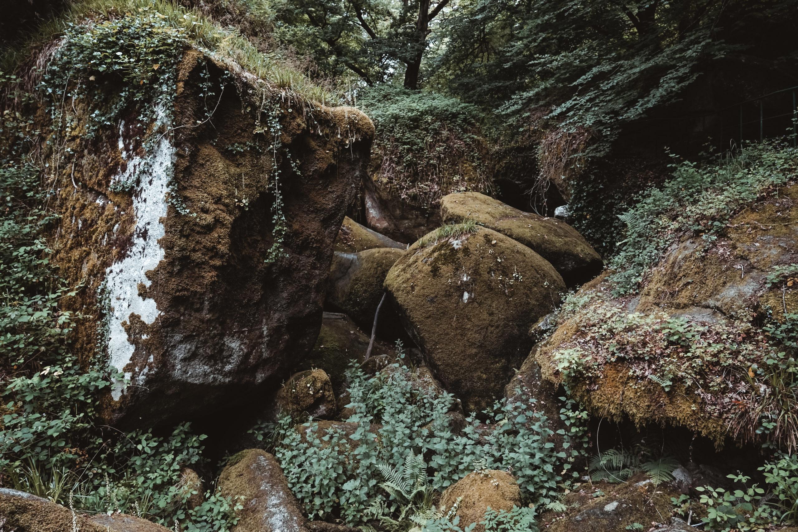 forêt huelgoat bretagne